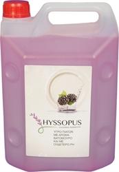 Εικόνα της Hyssopus υγρό πιάτων με άρωμα βατόμουρο 4L